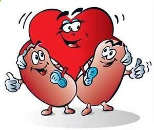 What Is the Life Span of People with Kidney and Heart Failure. Heart failure is a one of serious complication of kidney failure. It is also a significant death cause for the patients. What is the life span of people with both kidney failure and heart failure?