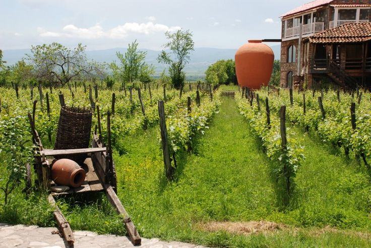 Wine Tourism to Georgia.
