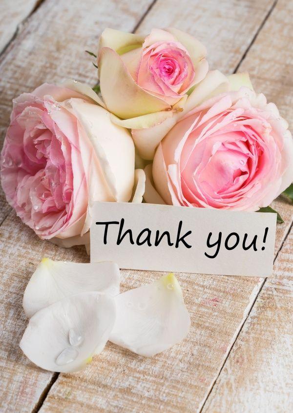 rosige Danksagung | Danke | Echte Postkarten online versenden | MyPostcard.com