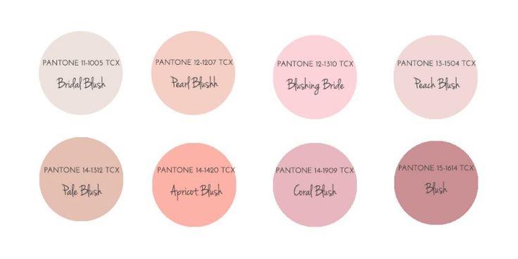 ブラッシュピンクのカラーガイド
