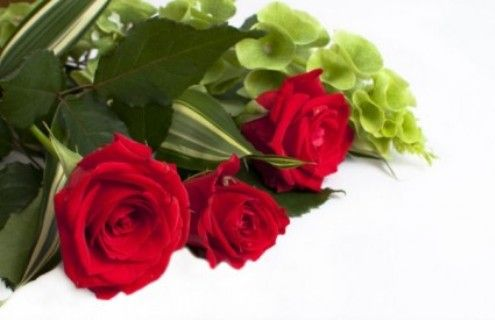 https://form.jotform.me/61780430774458  Flowers That Say I Love You,  Flower Of Love,I Love You Roses,Thinking Of You Flowers,Flower For You,Flowers Of Love,Flowers Love,Flower Love,From U Flowers