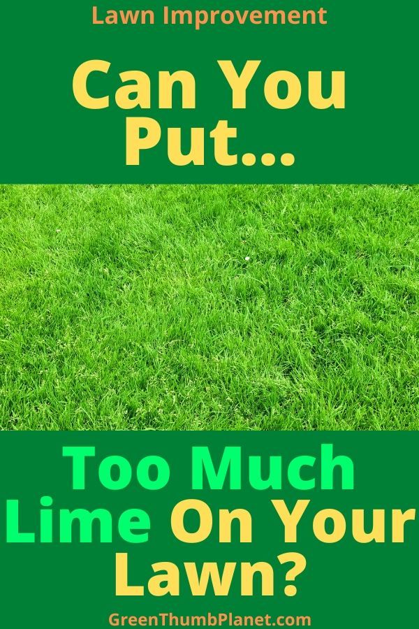 Too Much Lime On Your Lawn In 2020 Lawn Lime For Lawns Moss Lawn