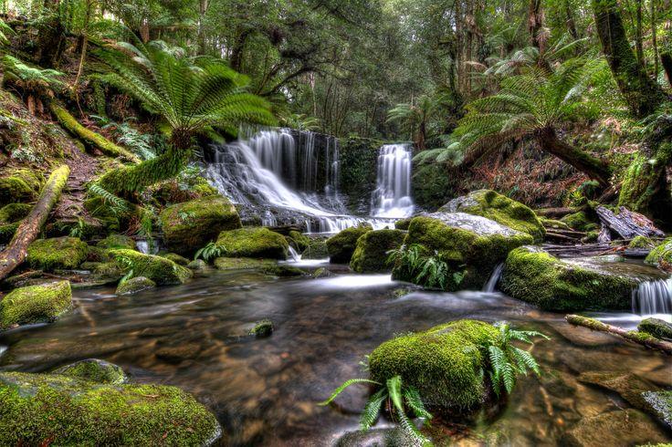 Horseshoe Falls, a popular waterfall to visit at Mt Field National Park, Tasmania
