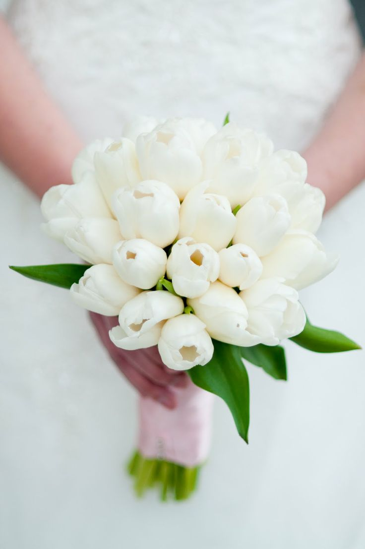 French tulips my fav for Wedding bouquet tulips and roses