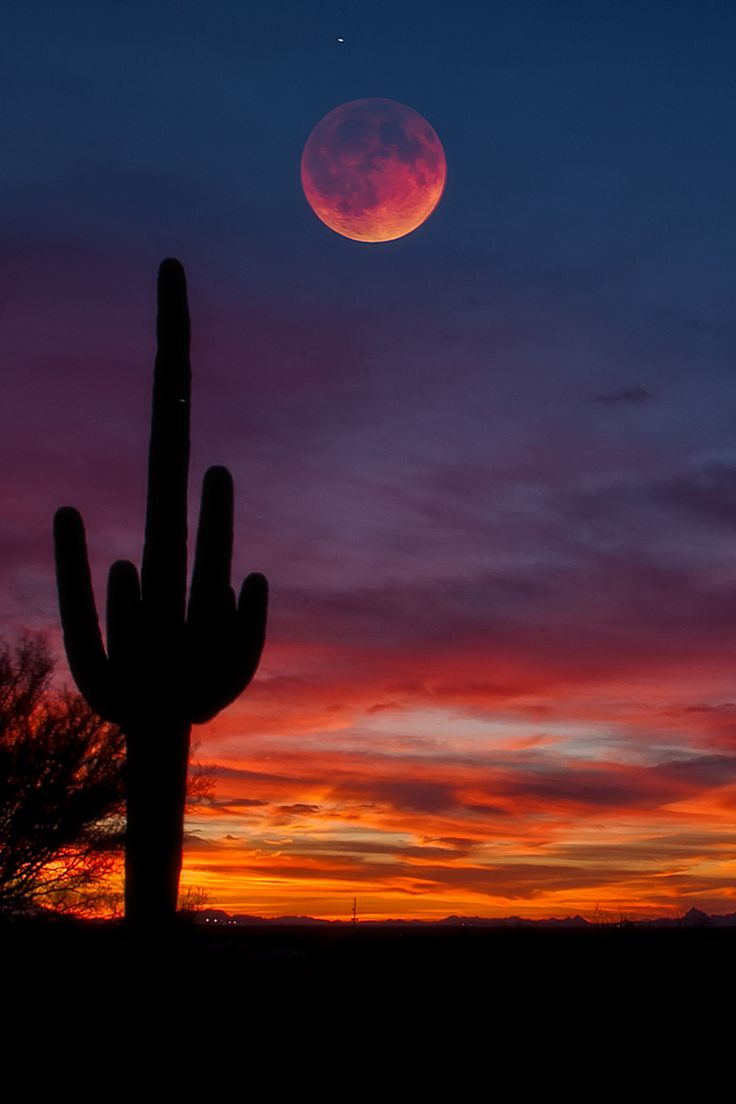 25+ best ideas about Desert sunset on Pinterest | Desert ...