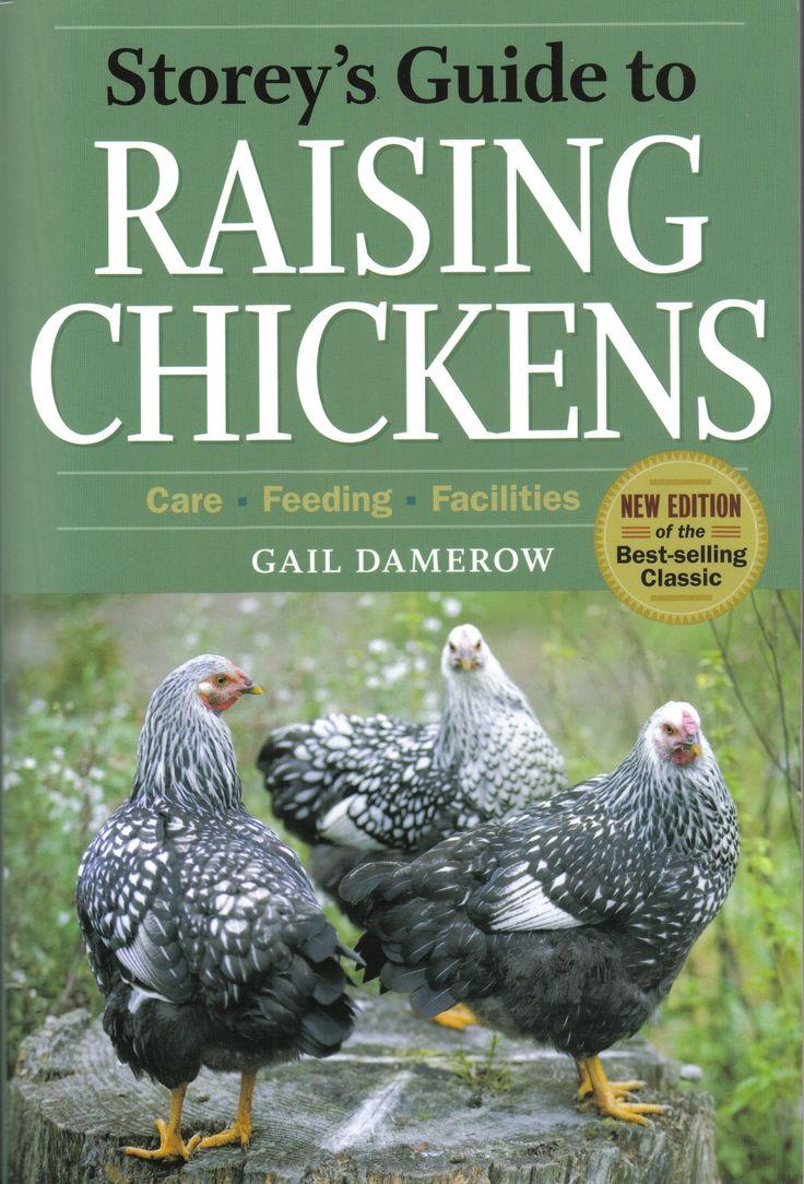 chicken breeds with photos | ... eggs. Chicken videos, chicken breed photos, chicken breed information