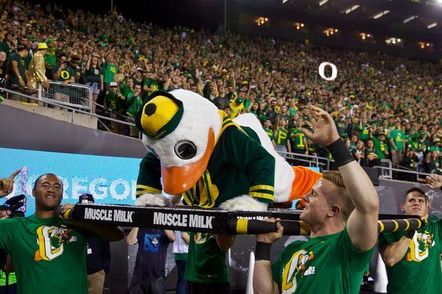The Duck doing his Pushups after an Oregon Ducks Score against Rival Washington Huskies at Football Game October 2014