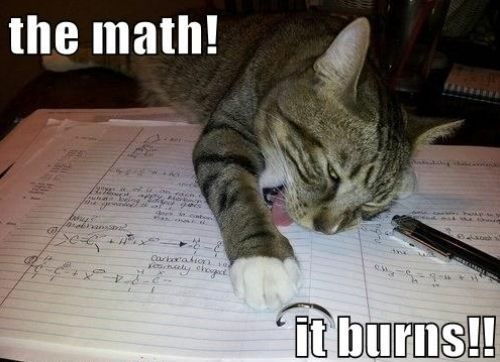 This is how I feel whenever I have to do math