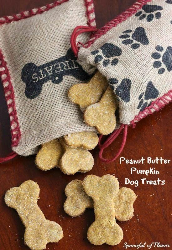 Peanut Butter Pumpkin Dog Treats - one bowl and a few ingredients create a wholesome treat for dogs.