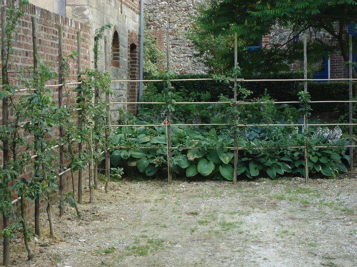 natuurlijke afscheiding - leifruit -hagen - oude muren