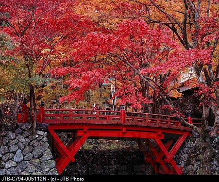takeshi tip: Yokokuraji, Bridge, Autumn tint, Ibigawa, Gifu, Japan