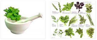 Σε αυτή την κατηγορία μας θα βρείτε δύο λίστες!!!   1) Βότανα: Αναφέρονται σε 50 βότανα με τις χρήσεις τους και τις ιδιότητες τους στην υ...