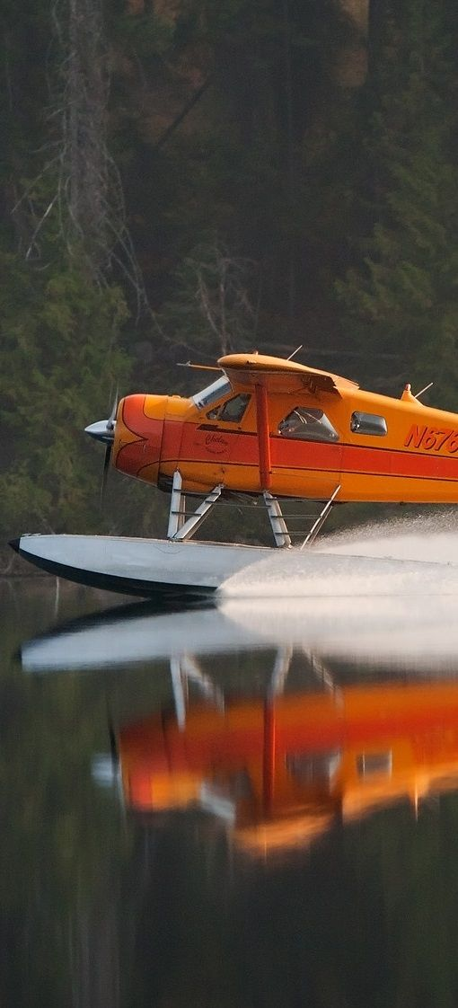 De Havilland Canada DHC 2.  Oh, I don't wish for many toys limited to the wealthy ones... but a nice seaplane as such would be one!