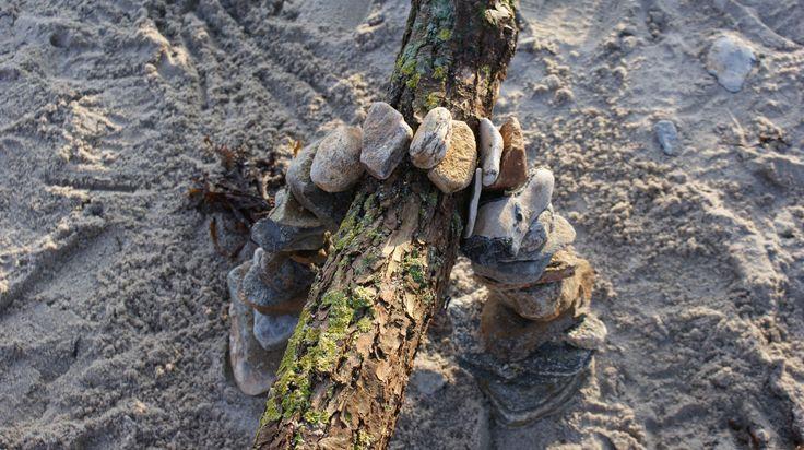 Stone vs tree