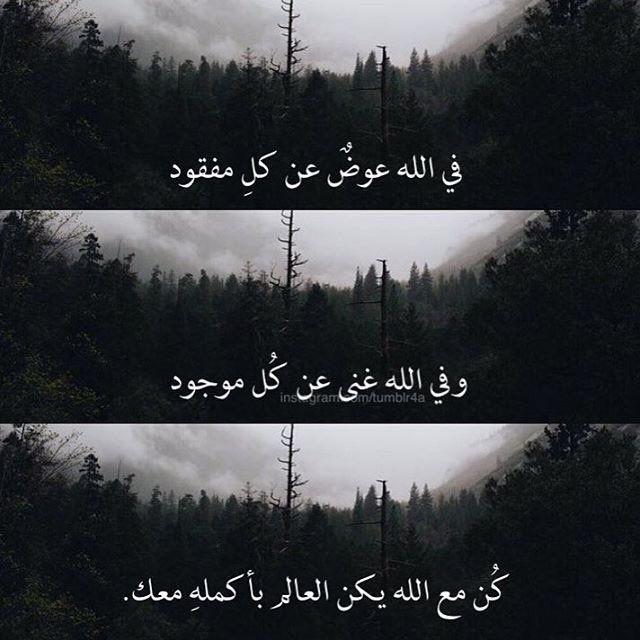 DesertRose,;,كُن مع الله يكن العالم بأكملِه معك,;,