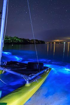Bioluminescent Bay – Fajardo, Puerto Rico. Click through to see 15 more of the world's most unique & awesome beaches!