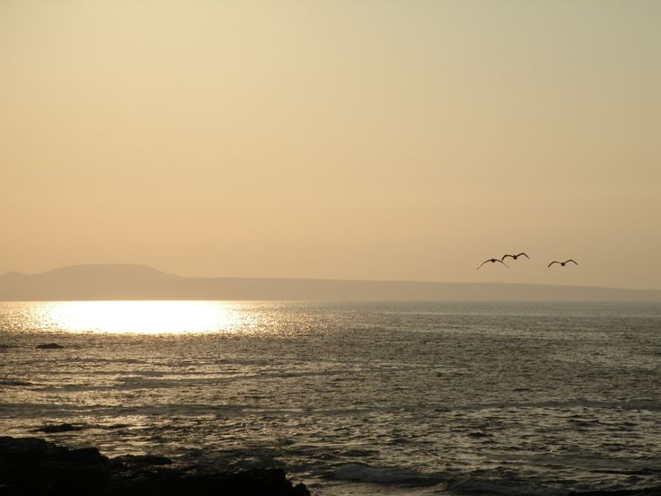 Mirador Roquerio de la Península de Tongoy