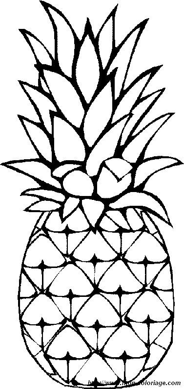 Pineapple And Fruits To Color Picture Pineapples