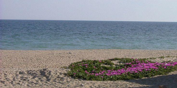 Descubrir encantos de Huelva en verano - http://www.absoluthuelva.com/descubrir-encantos-de-huelva-en-verano/