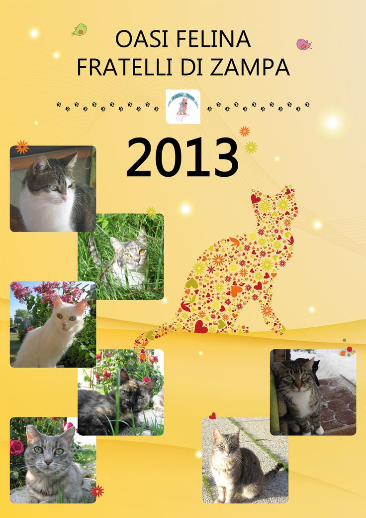 #calendar #calendario #cat #gatti