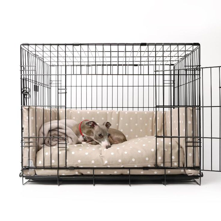 Turn your canines crate into a cosy lair with Charley Chau's stylish print mattress and bed bumper set. Super comfy – both the mattress and bed bumpers are stuffed with insulating hollow-fibre and constructed like a sofa seat. This clever design prevents the fibre from moving around so that your dog won't have to put up with unwelcome lumps and bumps - even after you've washed the mattress in your machine!Additional information and key product features:Dog Crate Mattress