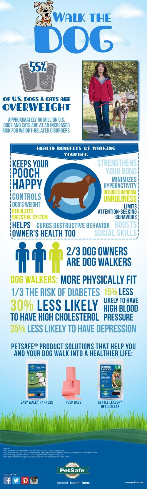 Decrease your risk of high cholesterol, high blood pressure, and depress...just by walking your #dog! via @PetSafe Brand #pethealth