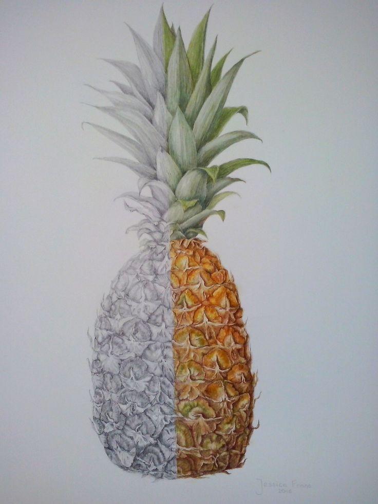 Pineapple ©Jessica Frans