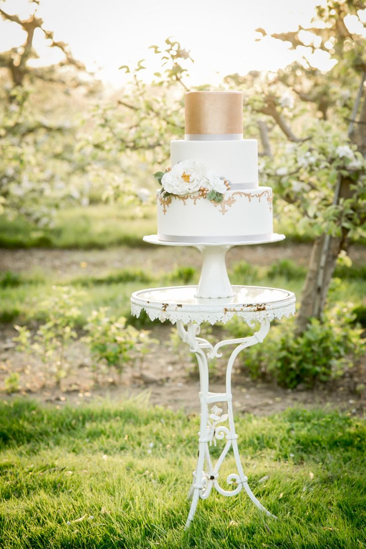 Photography: Simply K Studios   www.simplykstudios.com Venue: Hickory Hill Orchard   www.hickoryhillorchards.com   View more: http://stylemepretty.com/vault/gallery/35871  #weddingcake #gold #goldwedding #orchardwedding #weddingphotographyideas #simplykstudios #stylemepretty #ericaobriencakes #5thavenueweddings