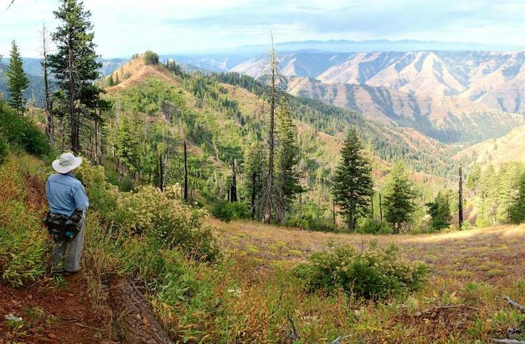 On the Summit Ridge Trail at Hells Canyon, with views of the High Wallowas on the skyline.