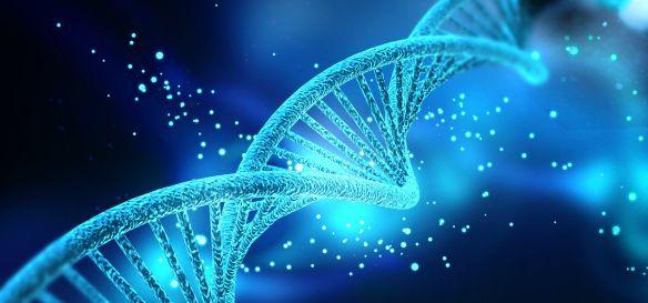 Bruce Lipton o fizyce kwantowej, umyśle, genach i samouzdrawianiu |