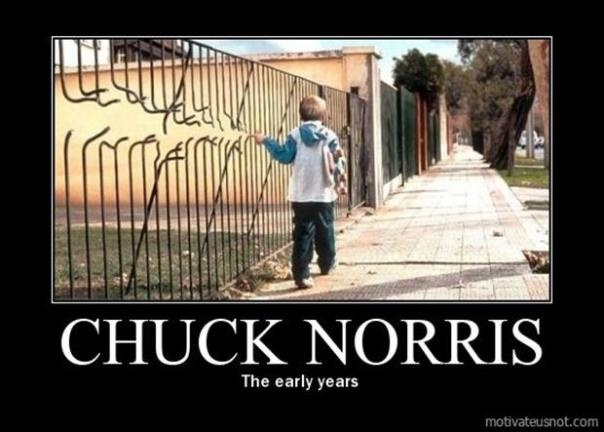 Funny Chuck Norris picture :)