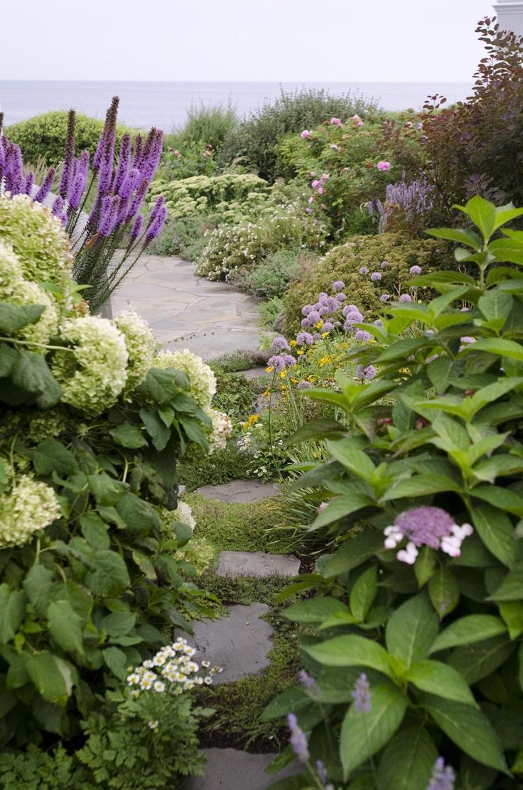 best path to glory images on pinterest driveways forests