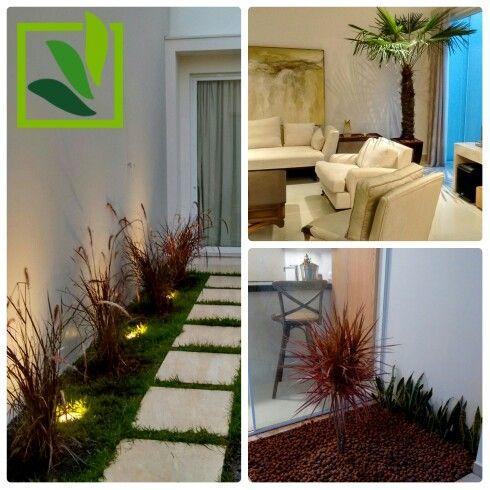 Paisagismo - Jardim - Capim do Texas - Dracena Tricolor - Palmeira Buriti - Terra Viva Paisagismo