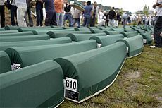 Srebrenica massacre - Wikipedia (never forget who began terrorism )
