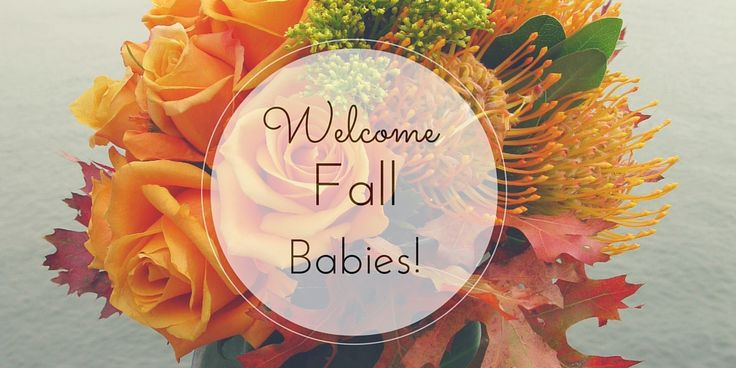 Celebrate fall babies with New York City flower deliveries to NYU Medical Center, Bellevue, and other NYC hospitals.
