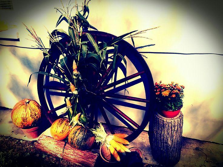 Venkovní dekorace podzim