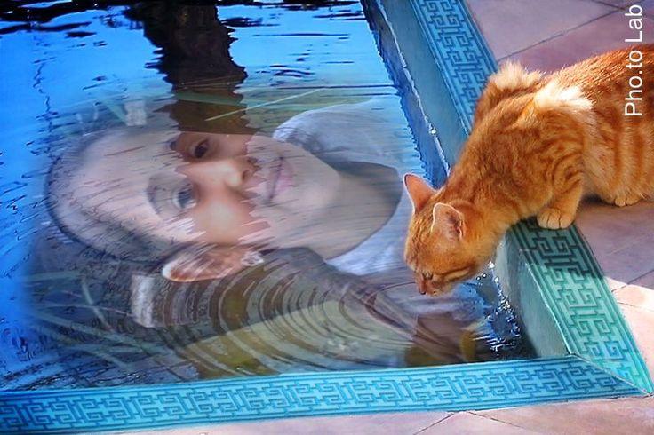 Alice con carota la nostra gattina