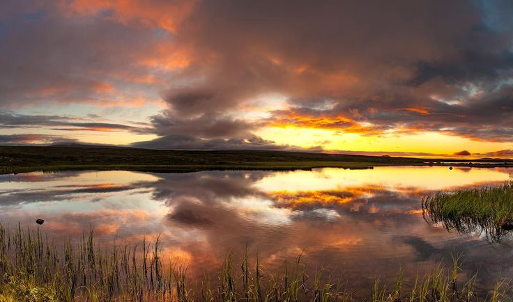 Guld #gold #beautyinnature #nature #sunset #sweden #dalarna #grövelsjön #stfgrövelsjön #ig_great_pics #breathtakingviews