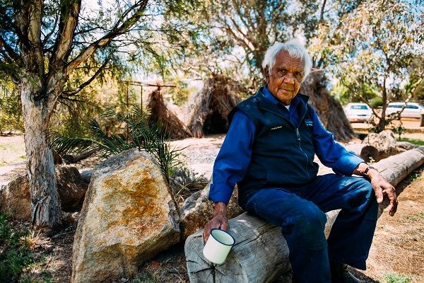 Learn about bush tucker and bush medicine from local indigenous elder Jack at Kodja Place