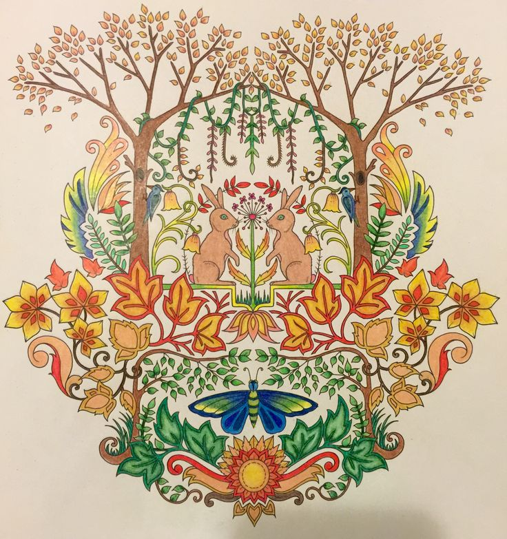 9 Best Images About Enchanted Forest Coloring Book On