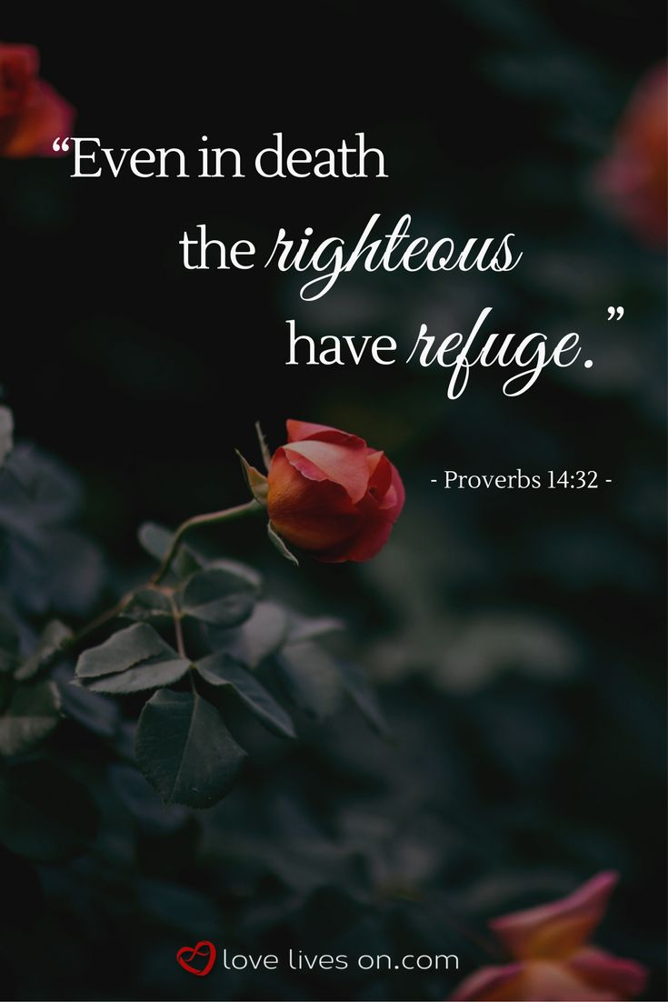 """Even in death the righteous have refuge."" Bible verse for funerals from Proverbs 14:32."