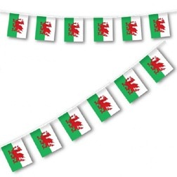 Hang out the bunting on St David's Day http://www.partypieces.co.uk/special-occasions/saints-day-celebrations/st-davids-flag-bunting.html