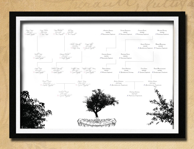 Elegant Ancestry Chart