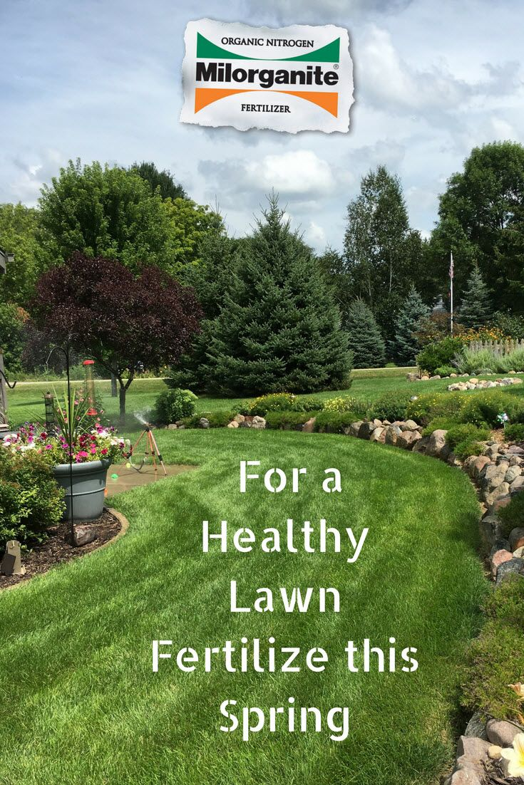 24 Best Images About Spring Lawn Care On Pinterest