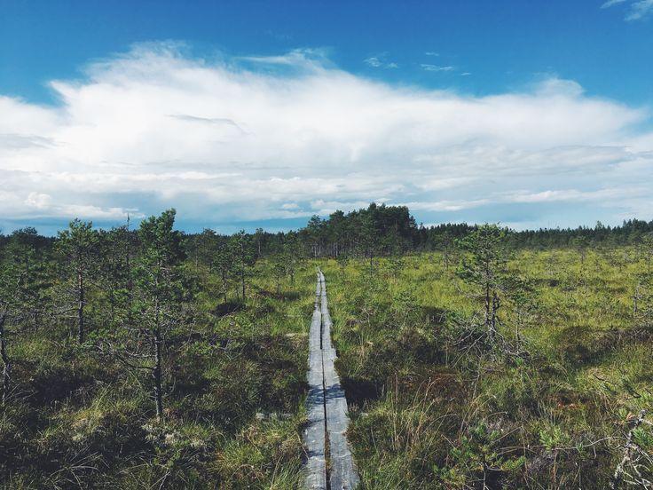 Finland (Utterleden/Saukonreitti)