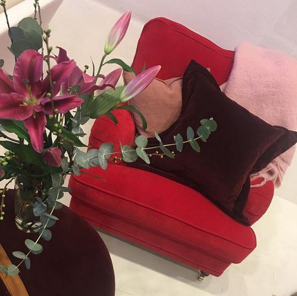 Röd Lejonet howardfåtölj i sammet. Howard, fåtölj, mässing, vinröd, rosa, vardagsrum, möbler, inredning.