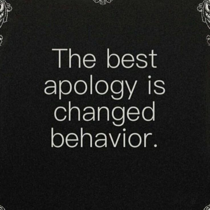 the best apology..........