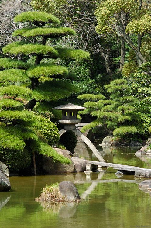 Japanese garden - Kenroku-en  http://www.japanesegardens.jp/gardens/famous/000062.php