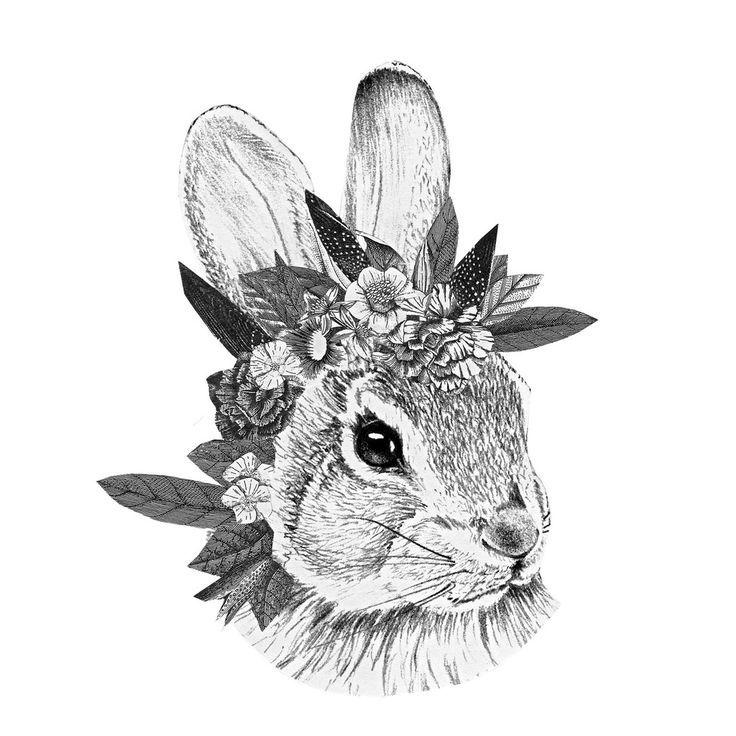 Conejo blanco y negro
