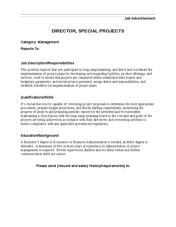 Director Special Projects Job Description Artworks Pinterest - salary requirements in resume